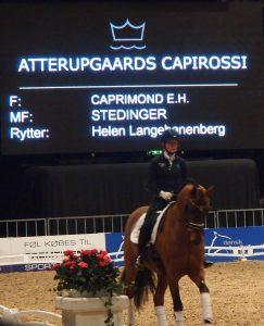 Helen Langenhanenberg på Atterupgaards Capirossi. Foto. hestezonen.dk