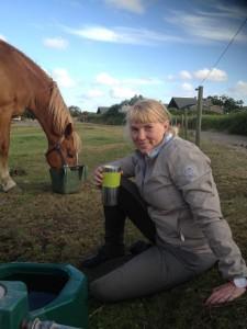 Der lades op efter rideturen! Lige bag hækken var campingpladsen, så vi boede meget tæt på hestene! Foto. hestezonen.dk