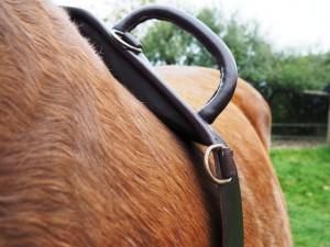 Longegjordens puder kan klemme hestens muskulatur, hvilket kan indskrænke forbensaktionen. Særligt stort pres på muskulaturen (og ofte også på skulderbladet) opstår, hvis der anvendes fx indspændingstøjler. Foto. hestezonen.dk