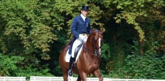 Hest og Rytter - Hooves