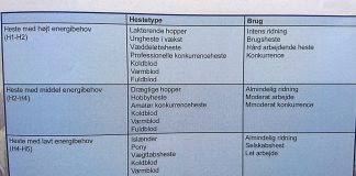 grovfoder kategorisering heste hestezonen.dk