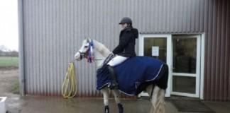 hestezonen nbefaling