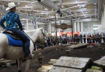 Extreme Trail - Hansepferd