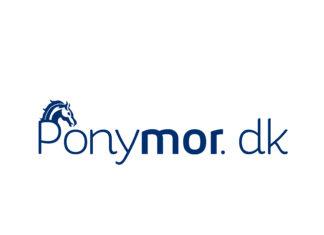 hvad kræver det at have en pony - ponykøb - online kursus