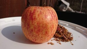 Damino æbleguf